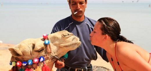 Как обманывают туристов в Египте и как себя защитить