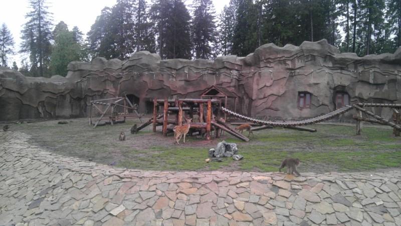 Ижевский зоопарк