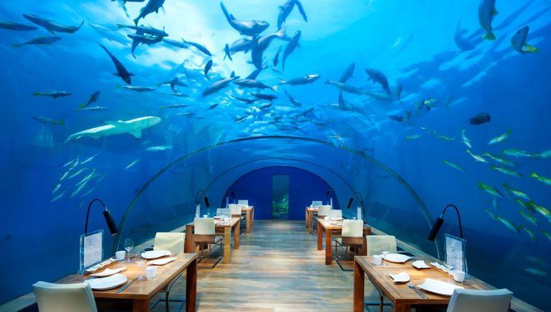 Ithaa-Undersea-Restaurant1