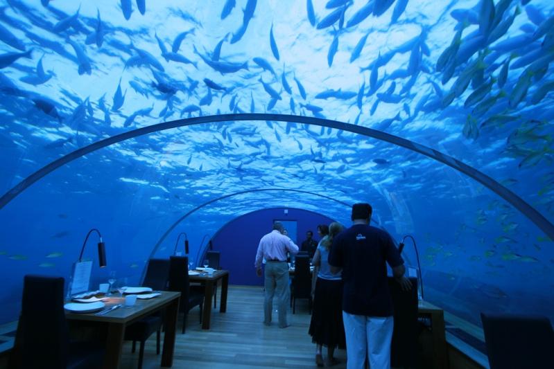 ithaa-undersea-restaurant (1)
