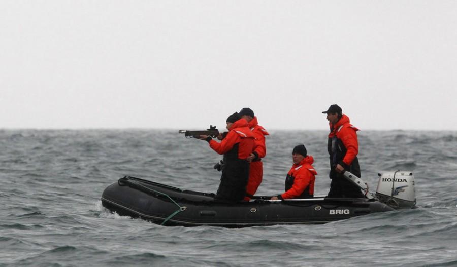 25 августа 2010 года, бухта Ольги на Тихом океане. Премьер России Владимир Путин целится из арбалета в серого кита, чтобы взять у него кусочек кожи для анализов